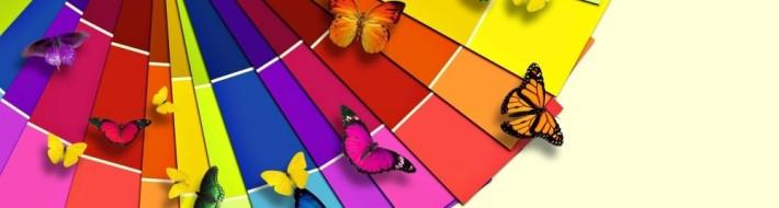 kolory w sklepie internetowym