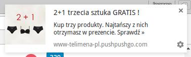 webpush_telimena-pl