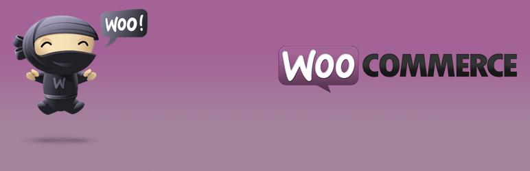 Najpopularniejsza wtyczka WordPressa