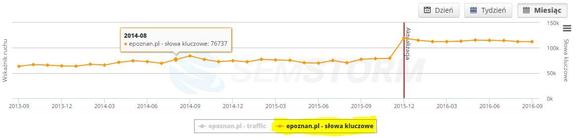 semstorm.pl opinie